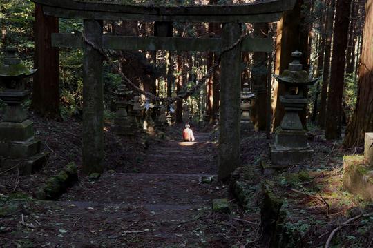 上色見熊野座神社13l.jpg