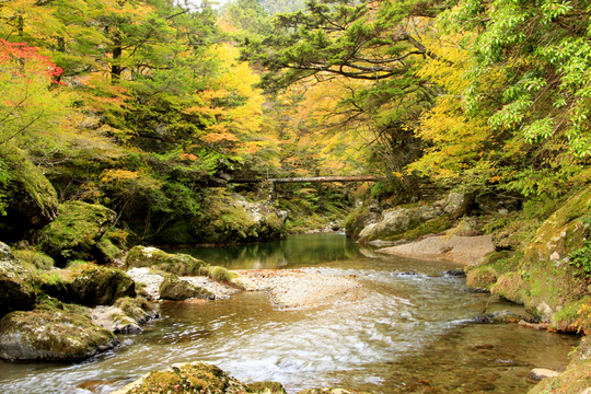 小田深山 橋l.jpg